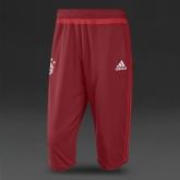 15-16 Bayern Munich Red Training Pants