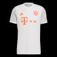 Bayern Munich Away Jersey 2020/21