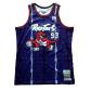 Toronto Raptors NBA Jersey Swingman Mitchell & Ness Purple