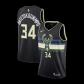 Milwaukee Bucks Giannis Antetokounmpo #34 NBA Jersey Swingman 2020 Nike - Black