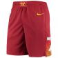 Denver Nuggets NBA Shorts Swingman 2020/21 Nike Red - City