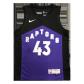 Toronto Raptors Pascal Siakam #43 NBA Jersey Swingman 2021 Nike Black&Purple